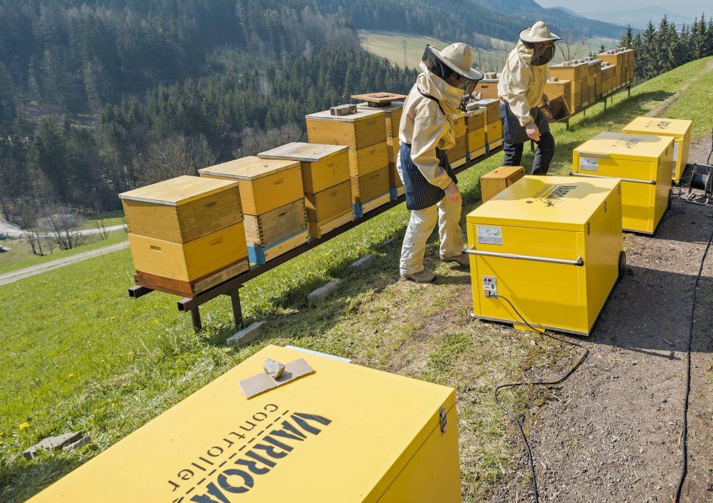 Kurt und Renate Tratsch, 230 Bienenvölker